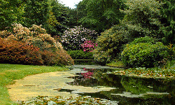 Jardín Botánico de Rotterdam